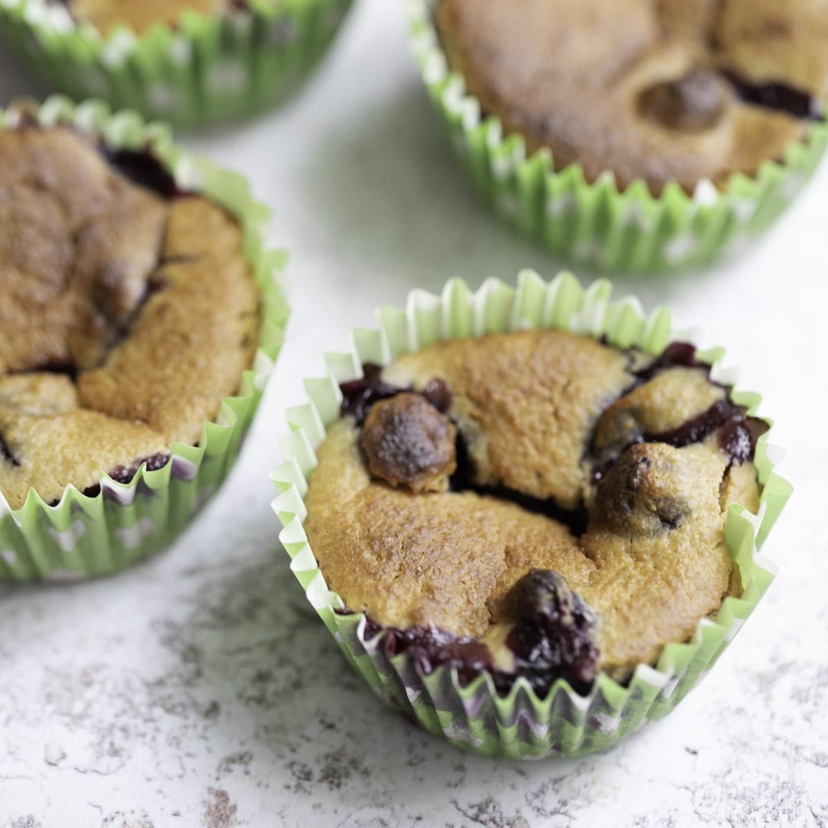a closeup photo of lemon blueberry oatmeal muffin