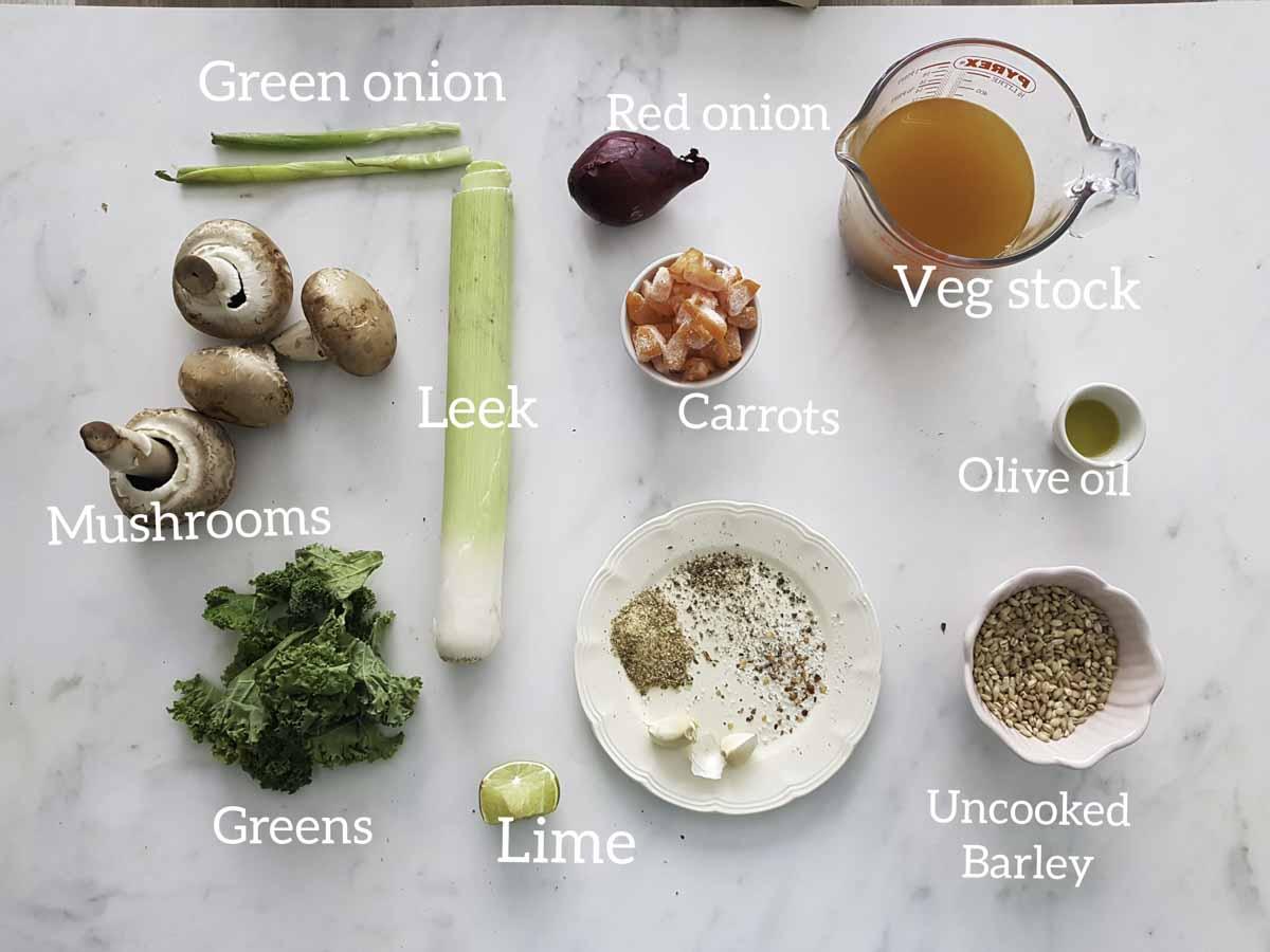 ingredients shot for barley vegetable soup